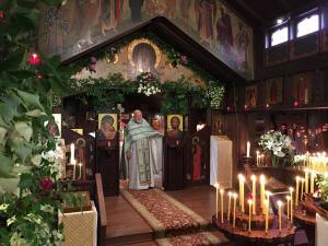 Pentecost (Troitsa) 2017